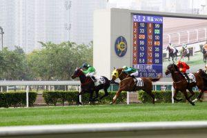 Xem đua ngựa Hồng Kông
