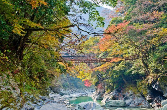 Cầu Kazurabashi, thung lũng Iya, Tokushima, Shikoku, Japan